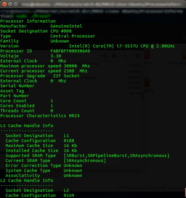 rruz@ubuntu^% ~-PAServer-scratch-dir-RRUZ-Linux Ubuntu-ProcessorInformation_001